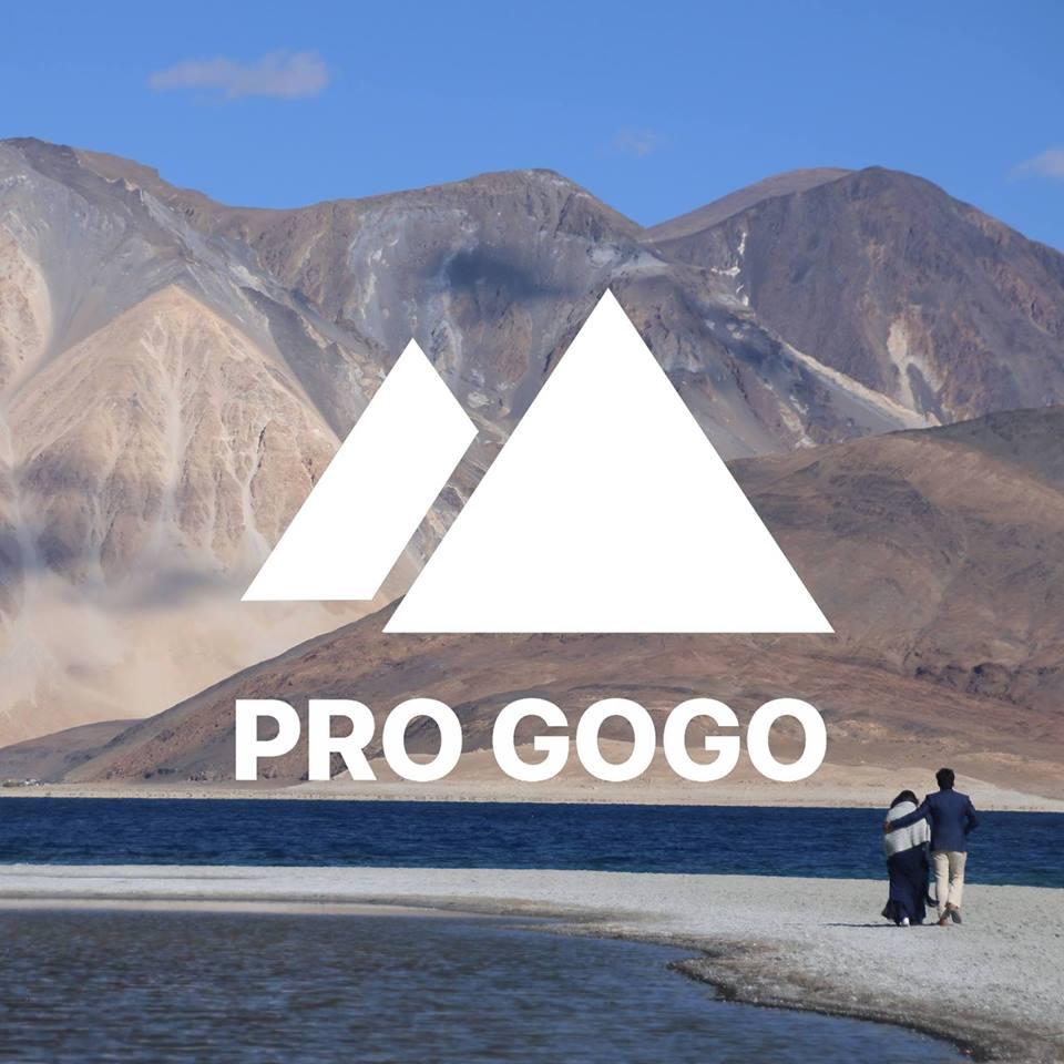 Pro go go