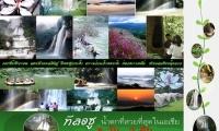 ทัวร์ ทีลอซู น้ำตกที่สวยที่สุดในเอเซีย 3 วัน 2 คืน พร้อม แคมป์ไฟ กรุ๊ป 10 ท่านขึ้นไป