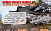 Spring Honshu Sakura Arshiyama - kyoto - fuji - tokyo 6d3n