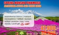Spring Honshu Pinkmoss Arshiyama - kyoto - fuji - tokyo 6d3n