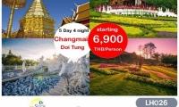 CHIANG MAI - CHIANG RAI DOI TUNG 25