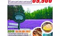Special lavender in hokkaido