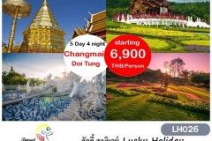 CHIANG MAI - CHIANG RAI DOI TUNG 5 DAYS 4 NIGHTS 26