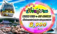 เที่ยวปูซาน HOT PROMOTION ลด 3000!!
