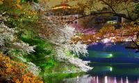ทัวร์ญี่ปุ่น DISCOVERY OKINAWA