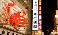 ทัวร์ญี่ปุ่น TOKYO FUJI ซุปตาร์ สกี ตอง 3 6 วัน 3 คืน (TG)