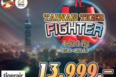 TAIWAN FIGHTER 13,999.-